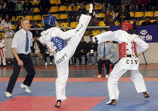 taekwondo, Nigeria Taekwondo Federation at 30, George Ashiru