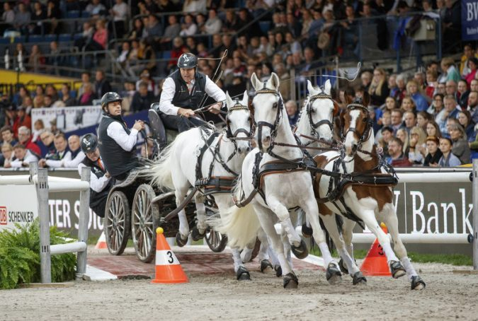 Title defender IJsbrand Chardon will try to put the pressure on his opponents in order to be able to take home the World Cup title again (FEI /Stefan Lafrentz)