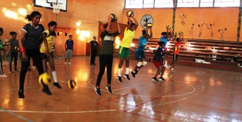 Eritrean Volleyball Federation, ENVF, FIVB,